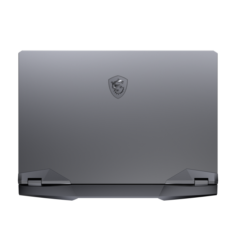 MSI GE66 Raider 10SFS-036IT NOTEBOOK GAMING